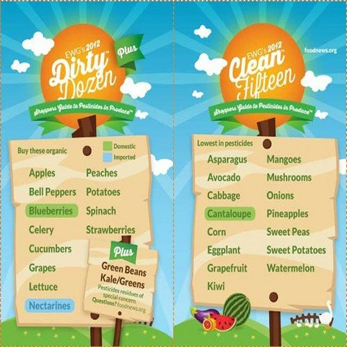 Dirty Dozen & Clean Fifteen Guideline
